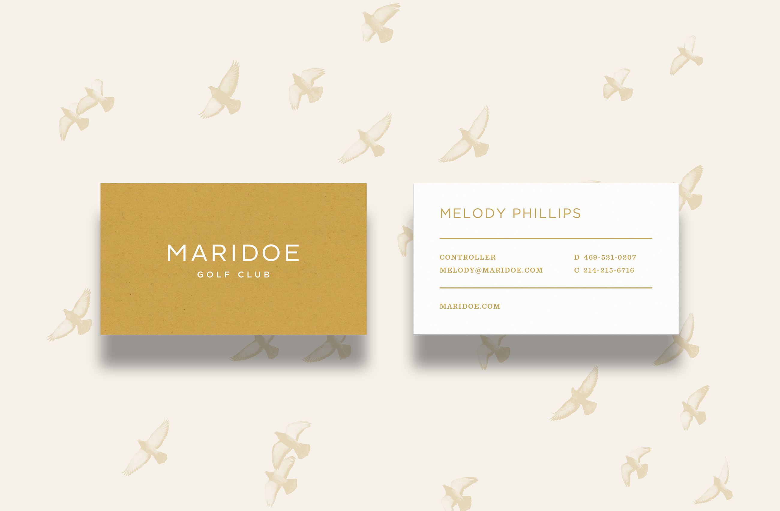 Maridoe Portfolio Large Bus Cards(actual)