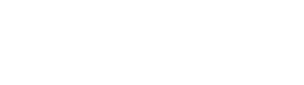 Switch Logo White
